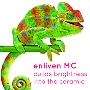 enliven metal ceramic